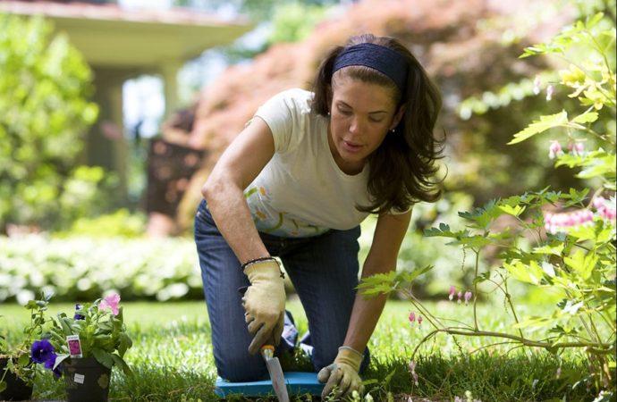 Giardinaggio, le detrazioni per un hobby che piace