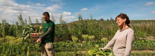 Comitato Agricolo del Magentino anche on line