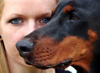 """Nozze Pet Friendly: """"Io non mi sposo senza il cane"""""""