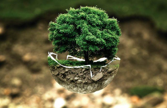 Rifiuti e green economy, l'esempio della Lombardia