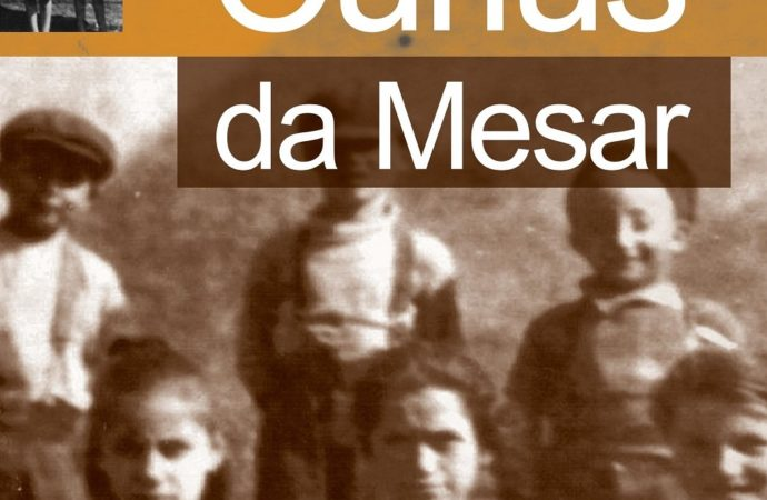Un libro su eventi storici e curiosità di Mesero