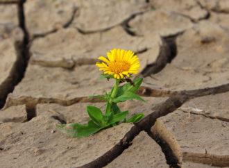 Affrontare i cambiamenti climatici dal basso si può