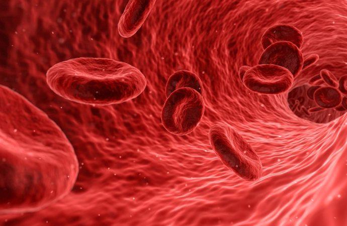 Dieta sui gruppi sanguigni, non è provata dalla scienza