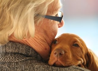 Come i cani possono migliorare gli uomini