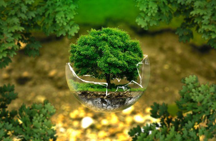A Magenta parte la sfida per lo sviluppo sostenibile