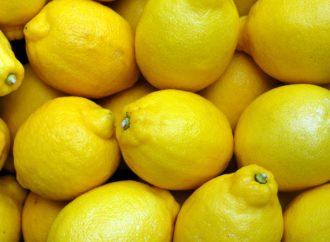 """Adesso """"L'odore dei Limoni"""" è un romanzo da leggere"""